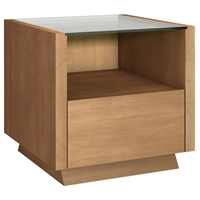 Contemporary End Table with Drawer