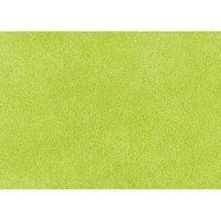 Luxury Lime Microfiber Futon Cover
