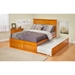 Madison Flat Panel Foot Board Bed - Trundle Bed, Platform - ATL-AR86-201